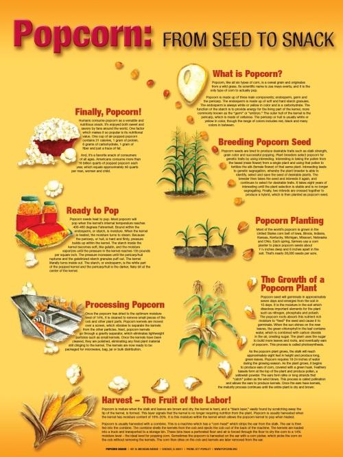 image via popcorn.org