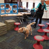 Keeper hunts for the odors hidden in the library